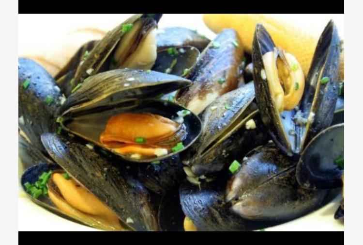 Residui plastica rischio pesci a tavola tiscali notizie - Pesci comuni in tavola ...