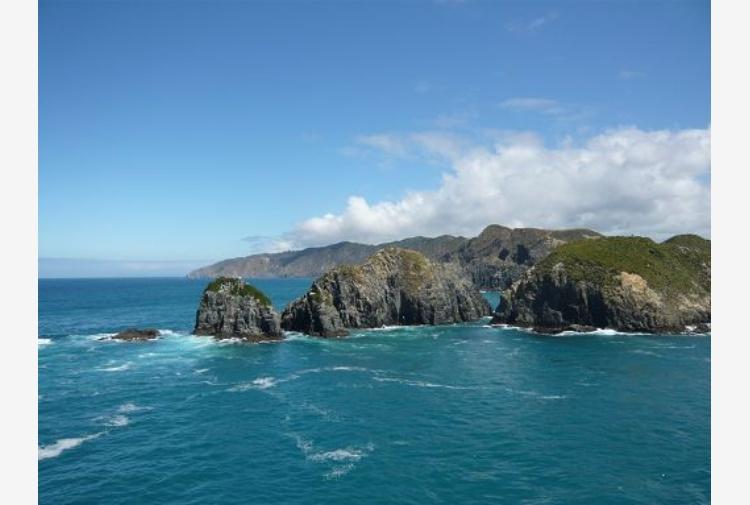 Scienziati vogliono far riconoscere un ottavo continente: Zealandia