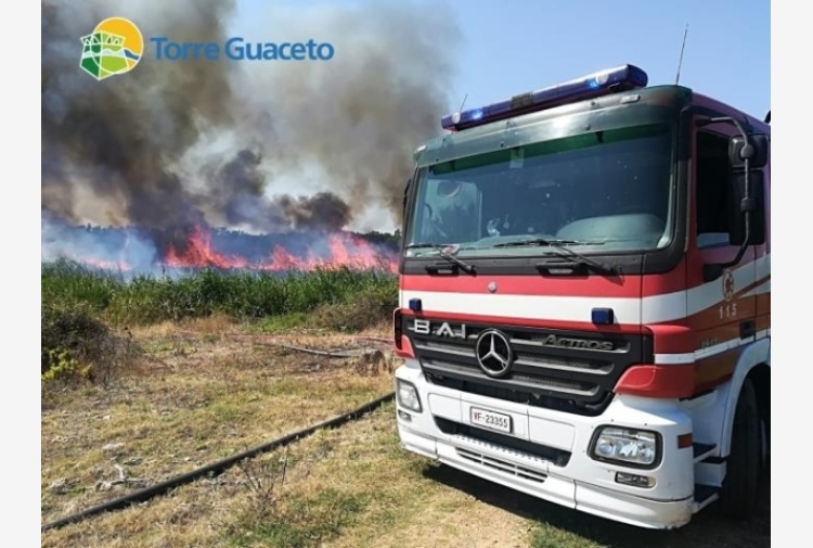 Incendio in canneto oasi Torre Guaceto