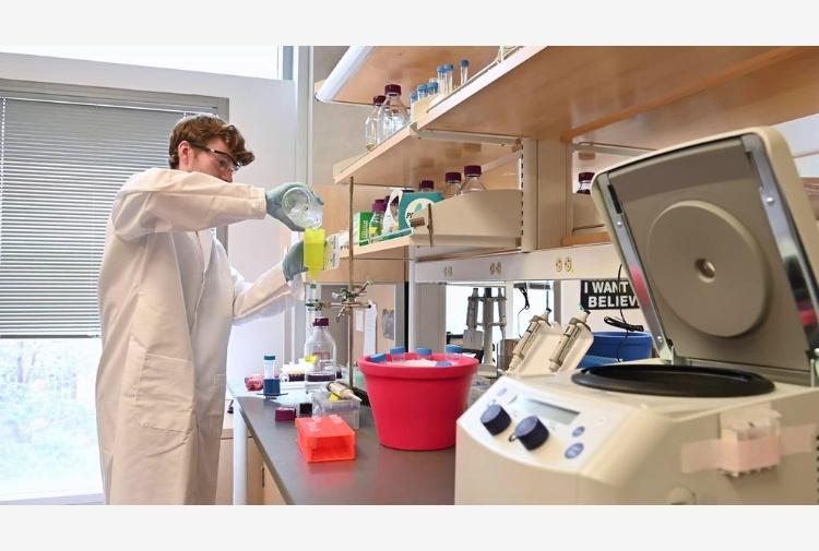 Comprar Plaquenil Coronavirus Generico En España – Medicamentos Sin Receta Online Villa Rico