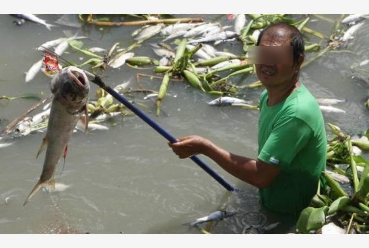 Una boa solare restituir la vita ai fiumi inquinati in - Portano acqua ai fiumi ...