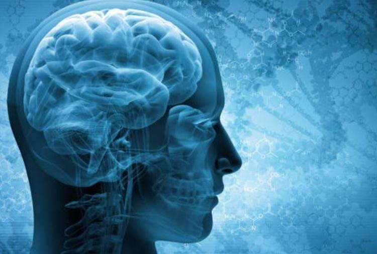 Parkinson, scoperta la proteina che causa la malattia