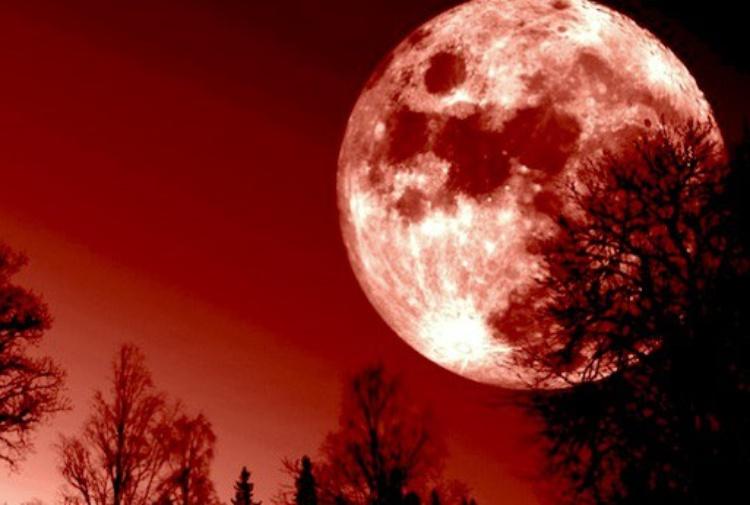 "Terra al buio per 103 minuti, attesa per la ""Luna di Sangue"": sarà l'eclissi totale più lunga del secolo"