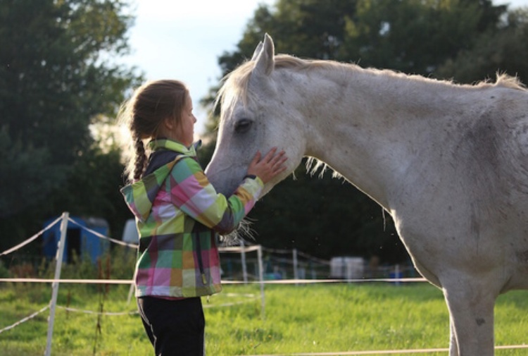 L'equitazione come terapia: quando il cavallo diventa dottore