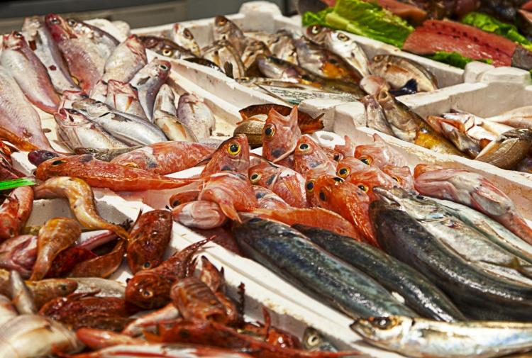 pesce dating numero di contatto del Regno Unito 100 siti di incontri gratuiti Edmonton