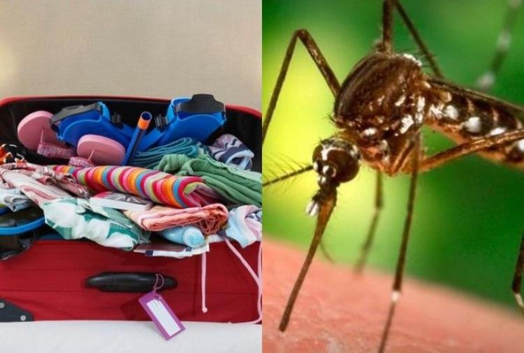 La bimba morta di malaria e la zanzara arrivata in valigia