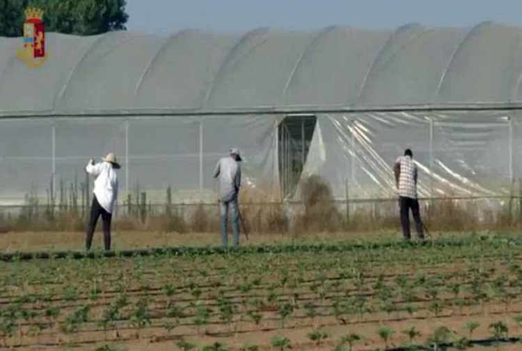 Imprenditore agricolo sparava verso i suoi braccianti per farli lavorare di più