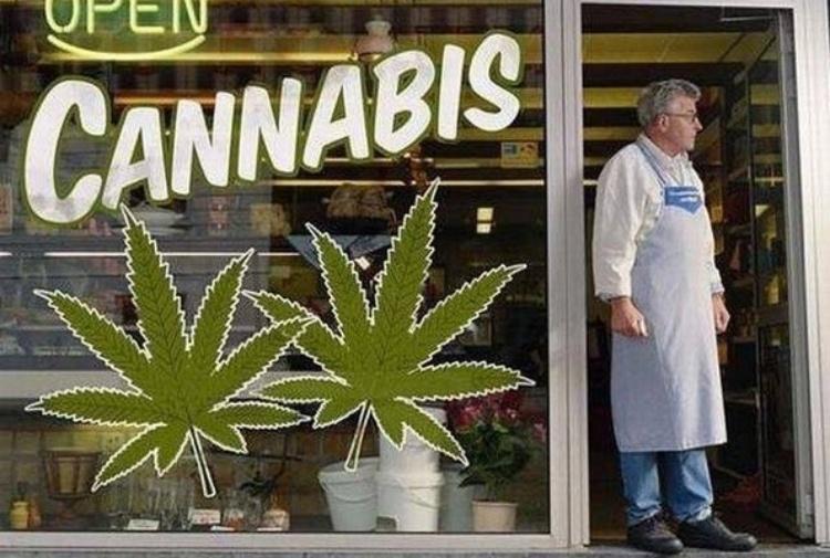 sito di incontri per marjuana